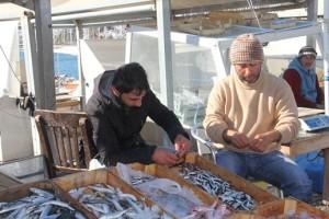tezgahta balık bereketi (2)