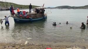 bodrum-deniz temizliği
