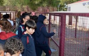 ogrenciler hayvan dostlarini ziyaret etti (2)