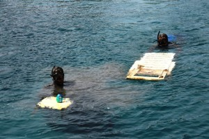 turkbuku deniz dibi temizligi (10)