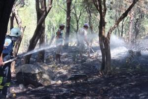 Bodrum-AKTUR sitesi yangın