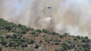 Bodrum-dereköy-makilik alan yangını