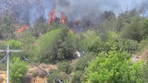 Bodrum-islamhaneleri makilik yangını