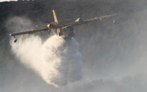 Bodrum-orman yangını-uçakla müdahale
