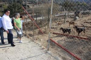 baskan kocadon alman hayvan severlerle berlin evini ziyaret etti (9)