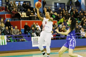 bodrum kırçiçeği basket