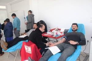 Bodrum kan bağışı