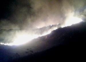 Gümüşlük-Karakaya-Yangın