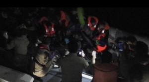 kaçak göçmenler-bodrum