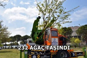 Büyükşehir'den ağaçları koruyan yatırım (8)